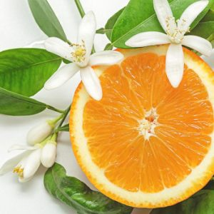 Read more about the article Neroli